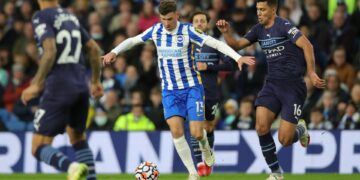 Brighton vs Man City Full Match Highlights